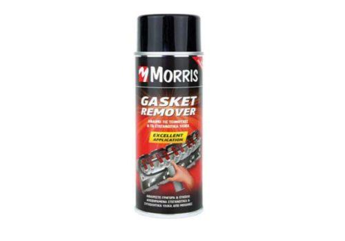 Gasket Remover