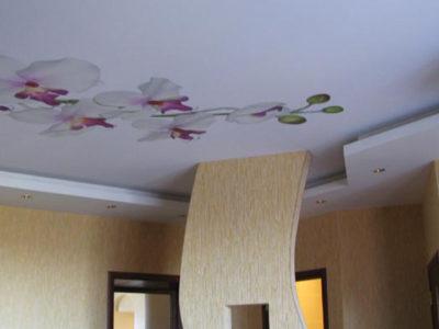 Комбинированный потолок - гипсокартон и натяжной потолок с печатью на полотне