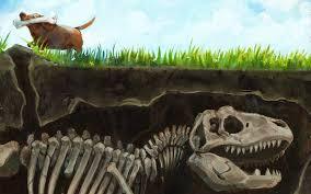 Скелеты животных в асфальте