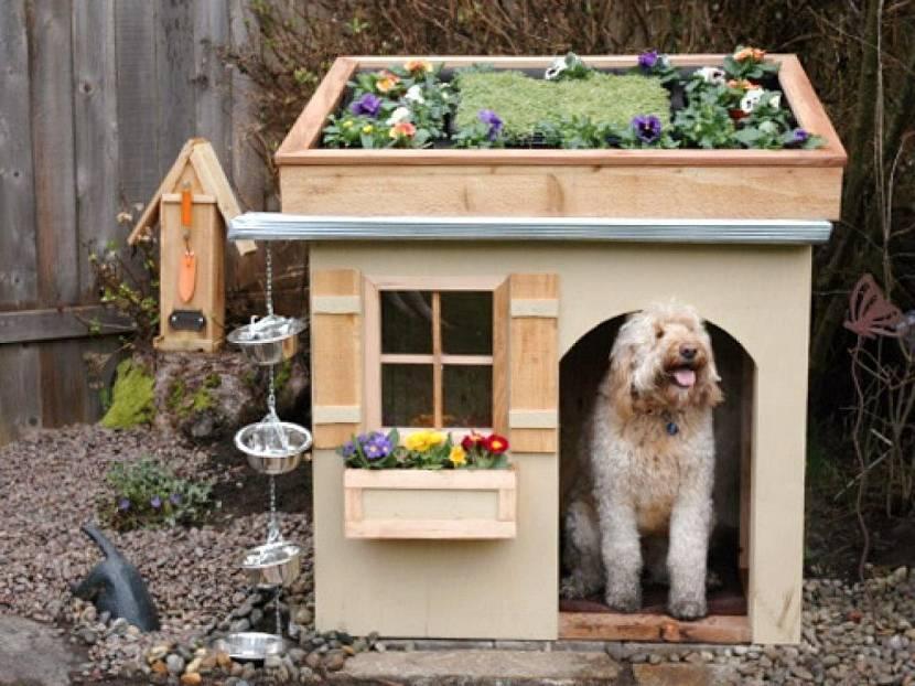 Будка для собаки с клумбой