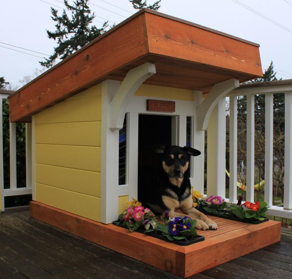 Место для собаки на участке