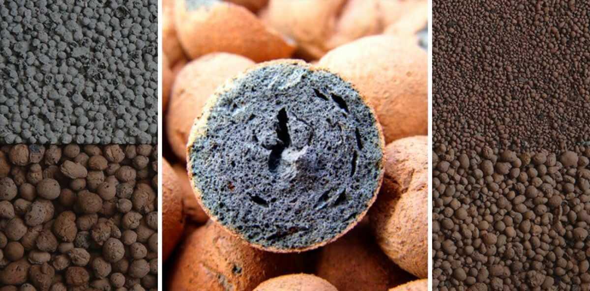 Как выглядят гранулы