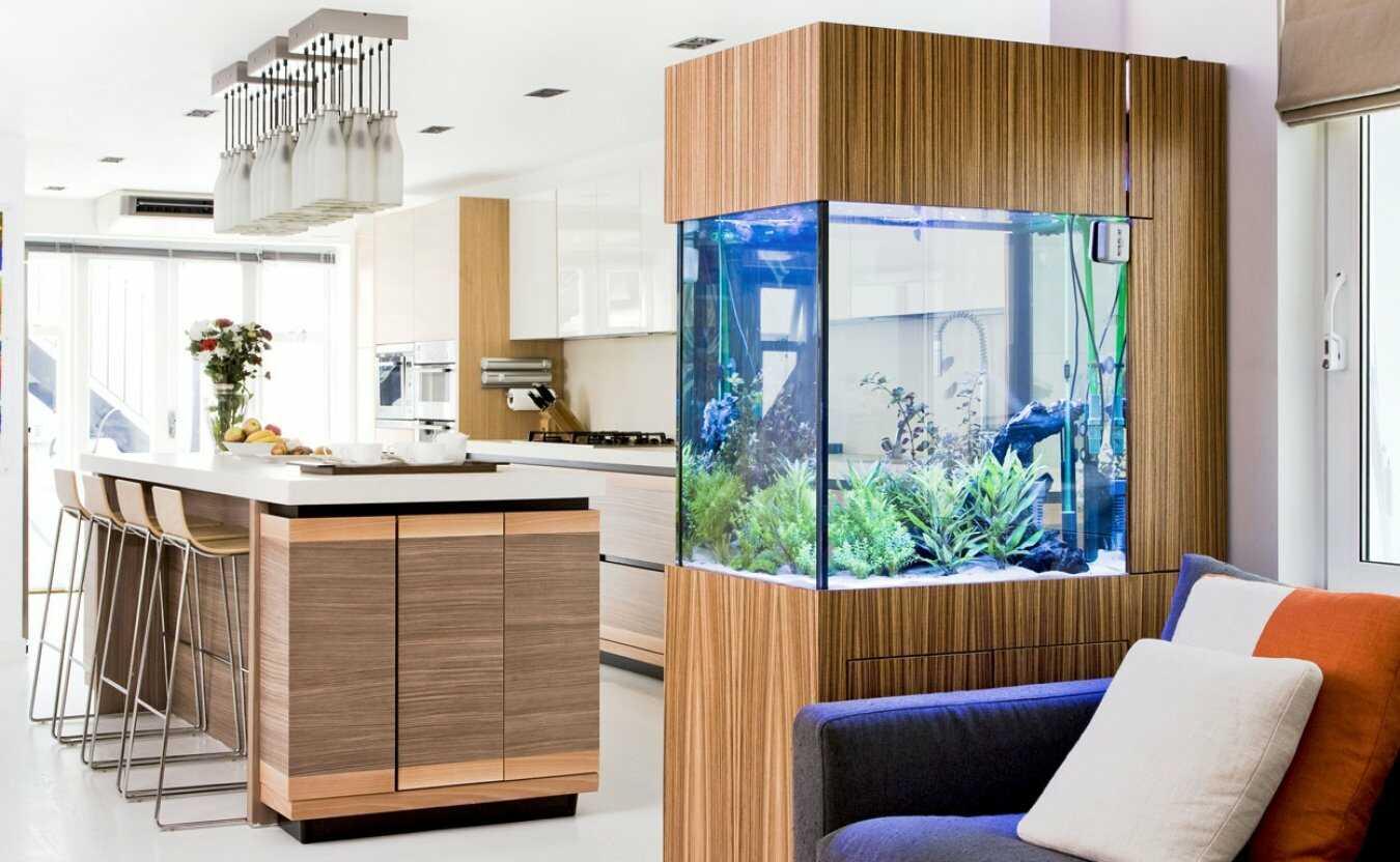 Разделение комнаты при помощи аквариума